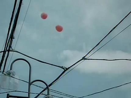 月桂冠つきCM 赤の連想篇